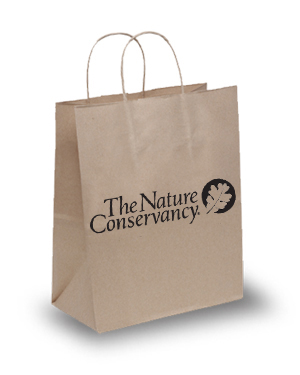 Eco Friendly Eco Jenny Bag